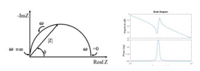 Niquest_Bode plots EIS analysis